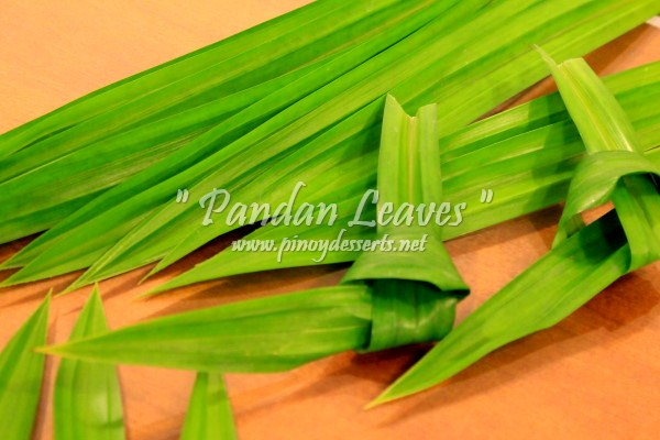 pandan leaves2